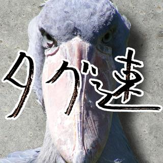 タグ速(日本語ハッシュタグまとめ一覧)