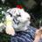 猫QB人(契約絶滅種)のアイコン