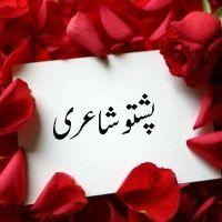 @pashtoshayari