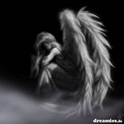 dreamies engel