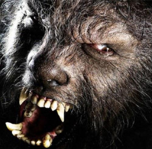 狼男 - Werewolf