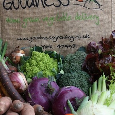 Image result for goodness veg york