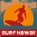 Hawaiit shirt11lg reasonably small