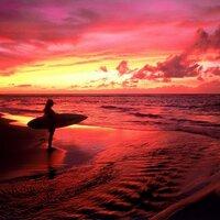 v surfer
