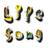 LifeSongInc