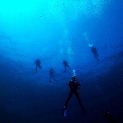 Triton Blue 67