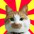 猫燵 (@nekotatsu88)