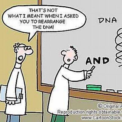 physics jokes