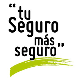 @Mas_Seguro