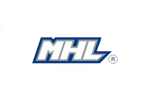 Mhl Hockey League - image 9