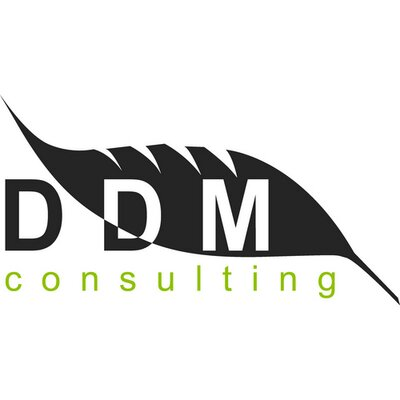 Logo DDM Consulting