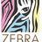 Zebra Print Design