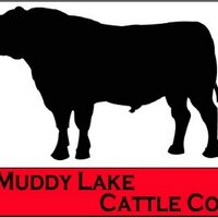 Muddy Lake Cattle Co | Social Profile