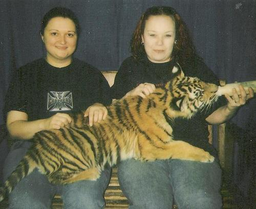 Me and amanda and a tiger