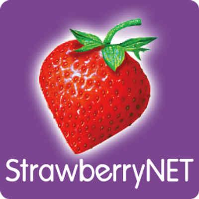 StrawberryNet is a Romanian NGO network aimed at promoting