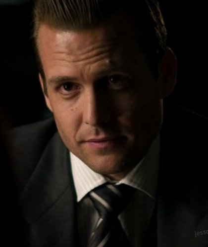 Harvey Specter FANS