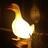 The Lighting Duck