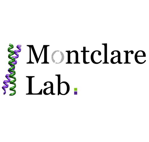 MontclareLabs