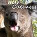 @holycutenesss