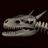 Bone Dragon Comics