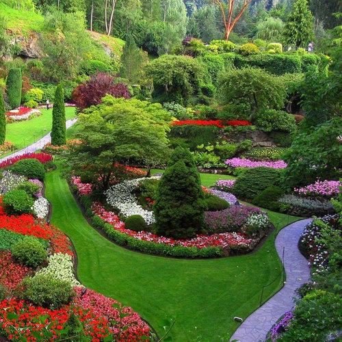 Sunny Gardens® (@SunnyGardens)   Twitter