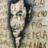 José Antônio Orlando