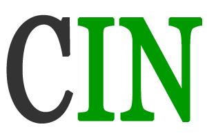CalcioIN