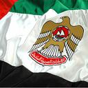 Wallpaper flag of uae dubai emirate  3  reasonably small