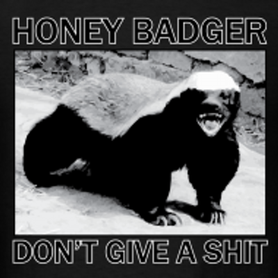 Honey badger dont give a shit - photo#8