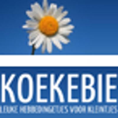 Koekebiekids On Twitter Alvast Gefeliciteerd Donna Hele Fijne