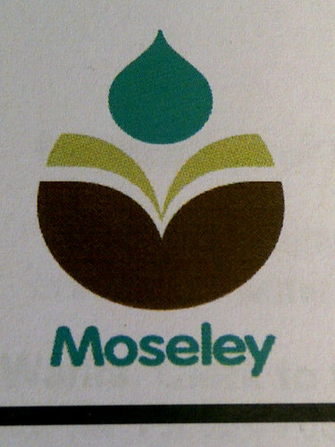 Moseley Primary