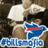 BuffaloBills13