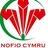 Para-Swim Wales
