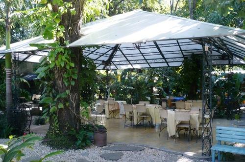 Vivero caf jard n viverocafe twitter for Viveros y jardines