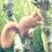 Image de profil de papygeo85