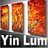 Abstract Art Yin Lum