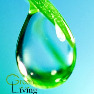Green living greenliving twitter for Greenliving com