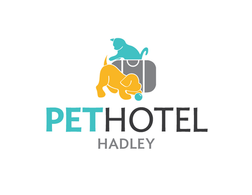 Pet hotel hadley pethotelhadley twitter for Pet hotels near me
