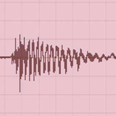 sf quakebot