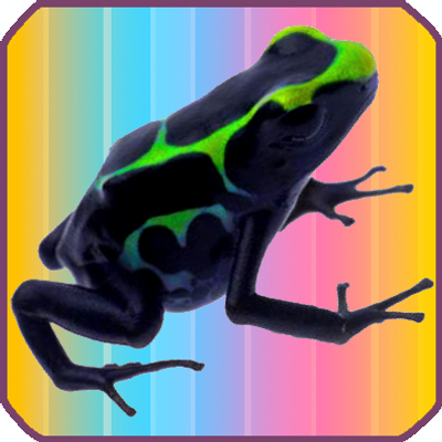Data Frog | Social Profile