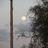 Andrew Green-Howard - AJHoward13