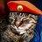 rowleywaycat