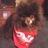 psch1 avatar