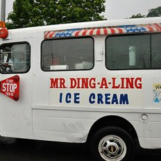 mr ding a ling dingalingalbany twitter