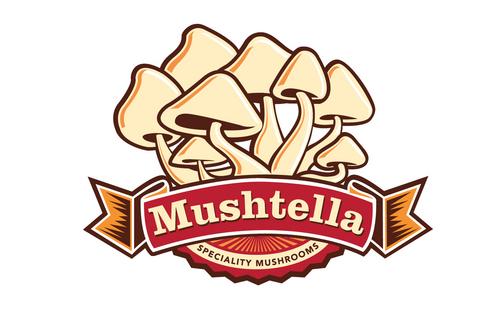 @mushtella