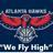 We Fly High-Hawks