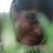 Susana_BerGon's avatar'