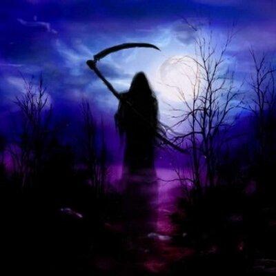 Dark Angel Dream On Twitter Jasmine Flowers Whol Jasmine Whose