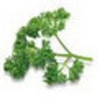 Parsley | Social Profile