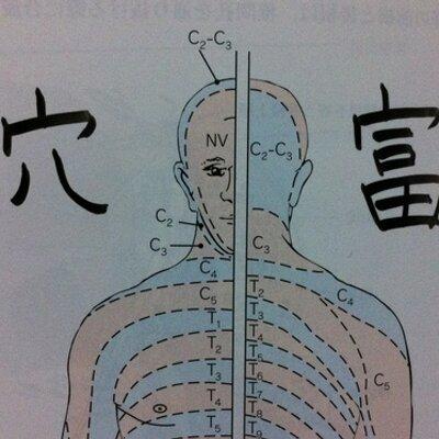 """解剖小僧 on Twitter: """"視床下部の機能中枢 自慢は退院に接触 自→自律 ..."""